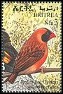 Cl: Red-billed Quelea (Quelea quelea) SG 422 (1998) 130