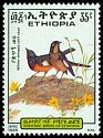 Cl: White-winged Cliff-Chat (Thamnolaea semirufa) SG 1441 (1989) 75