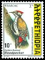 Cl: Abyssinian Woodpecker (Dendropicos abyssinicus)(Repeat for this country)  SG 1692 (1998) 20