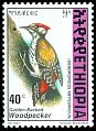 Cl: Abyssinian Woodpecker (Dendropicos abyssinicus)(Repeat for this country)  SG 1698 (1998) 25