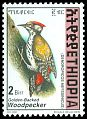 Cl: Abyssinian Woodpecker (Dendropicos abyssinicus)(Repeat for this country)  SG 1710 (1998) 300