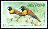 Cl: Chestnut-breasted Munia (Lonchura castaneothorax) <<Vini>> (Introduced)  SG 381 (1982) 325