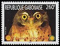 Cl: Red-chested Owlet (Glaucidium tephronotum) new (2004)  [5/8]
