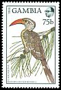 Cl: Red-billed Hornbill (Tockus erythrorhynchus) SG 762 (1988) 85