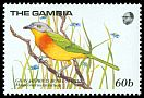 Cl: Grey-headed Bushshrike (Malaconotus blanchoti) SG 869 (1989) 85