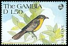 Cl: Yellow-throated Greenbul (Chlorocichla flavicollis) SG 1124 (1991) 40