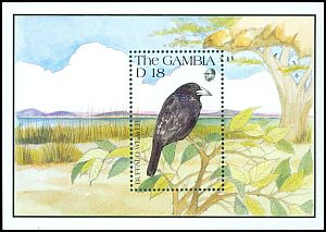 Cl: White-billed Buffalo-Weaver (Bubalornis albirostris) SG 1155b (1991) 0