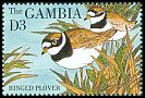 Cl: Common Ringed Plover (Charadrius hiaticula) SG 1978 (1995) 35