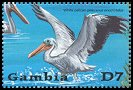 Cl: Great White Pelican (Pelecanus onocrotalus)(Repeat for this country)  SG 4152e (2002)