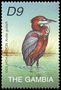 Cl: Goliath Heron (Ardea goliath) SG 4375b (2002)