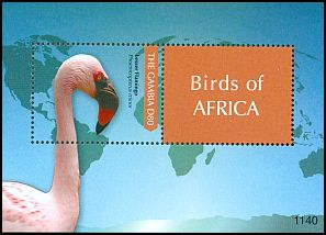 Cl: Lesser Flamingo (Phoenicopterus minor) SG 5457 (2011)