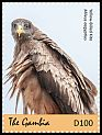 Cl: Black Kite (Milvus migrans aegyptius)(I do not have this stamp)  new (2018)