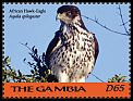 Cl: African Hawk-Eagle (Aquila spilogaster)(I do not have this stamp)  new (2018)