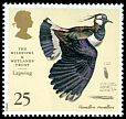 Cl: Northern Lapwing (Vanellus vanellus) SG 1916 (1996) 70