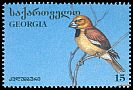 Cl: Hawfinch (Coccothraustes coccothraustes) SG 151 (1996) 60