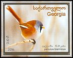 Cl: Bearded Reedling (Panurus biarmicus) new (2016)