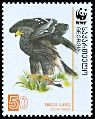 Cl: Greater Spotted Eagle (Aquila clanga)(Repeat for this country)  SG 511 (2007) 210