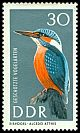 Cl: Common Kingfisher (Alcedo atthis) SG 995 (1967) 475