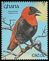 Cl: Orange Bishop (Euplectes franciscanus) SG 1586 (1991) 0