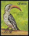 Cl: Red-billed Hornbill (Tockus erythrorhynchus) SG 1624 (1991) 0