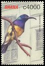 Cl: Variable Sunbird (Cinnyris venustus) SG 3326a (2002) 100