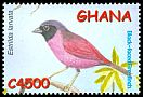 Cl: Black-faced Firefinch (Lagonosticta larvata) SG 3337f (2002) 150
