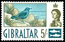 Cl: Blue Rock-Thrush (Monticola solitarius) SG 171 (1960) 800 [3/19]