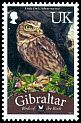 Cl: Little Owl (Athene noctua)(I do not have this stamp)  SG 1254a (2012)