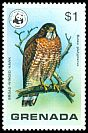 Cl: Broad-winged Hawk (Buteo platypterus) SG 927 (1978) 0