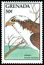Cl: Osprey (Pandion haliaetus) SG 1764 (1988) 100