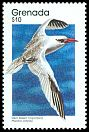 Cl: Red-billed Tropicbird (Phaethon aethereus) SG 2006 (1989) 0