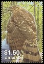 Cl: Cooper's Hawk (Accipiter cooperii)(Out of range and no other stamp)  SG 5018e (2004)  [3/49]