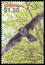 Cl: Prairie Falcon (Falco mexicanus)(Out of range and no other stamp)  SG 5018d (2004)  [3/49]