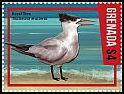 Cl: Royal Tern (Sterna maxima)(I do not have this stamp)  new (2016)