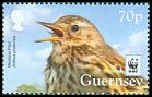 Cl: Meadow Pipit (Anthus pratensis)(Repeat for this country)  SG 1654 (2017)  [10/30]