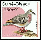 Cl: Maroon-chested Ground-Dove (Claravis mondetoura)(Out of range)  SG 1099 (1989) 65