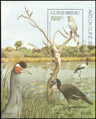 Cl: Lizard Buzzard (Kaupifalco monogrammicus)(Repeat for this country)  SG 1220 (1991) 500 [8/15]