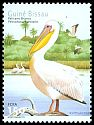 Cl: Great White Pelican (Pelecanus onocrotalus) <<Pelicano branco>>  SG 1344 (2001)