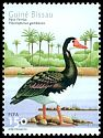Cl: Spur-winged Goose (Plectropterus gambensis) <<Pato-ferr&atilde;o>>  SG 1345 (2001)