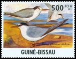 Cl: Little Tern (Sterna albifrons)(I do not have this stamp)  new (2011)  [7/31]
