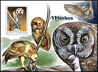 Cl: Barn Owl (Tyto alba)(I do not have this stamp)  new (2014)