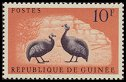 Cl: Helmeted Guineafowl (Numida meleagris)(Repeat for this country)  SG 278 (1961)  [3/19]