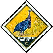 Cl: Vulturine Guineafowl (Acryllium vulturinum)(Out of range)  SG 745 (1971) 375
