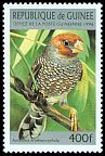 Cl: Red-headed Finch (Amadina erythrocephala)(Out of range)  SG 1694 (1996) 50