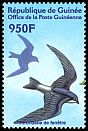 Cl: House Martin (Delichon urbica) <<Hirondelle de fen&ecirc;tre>>  new (2002)