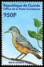 Cl: Rufous-tailed Rock-Thrush (Monticola saxatilis) <<Merle solitaire rouge>>  new (2002)