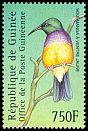 Cl: Variable Sunbird (Cinnyris venustus) <<Souimanga &agrave; ventre jaune>> (Repeat for this country)  new (2001)