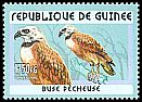 Cl: Black-collared Hawk (Busarellus nigricollis) <<Buse p&ecirc;cheuse>> (Out of range)  new (2001)