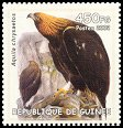 Cl: Golden Eagle (Aquila chrysaetos)(Out of range)  new (2002)  [2/10]