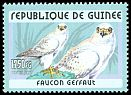 Cl: Gyrfalcon (Falco rusticolus) <<Faucon gerfaut>> (Out of range)  new (2001)